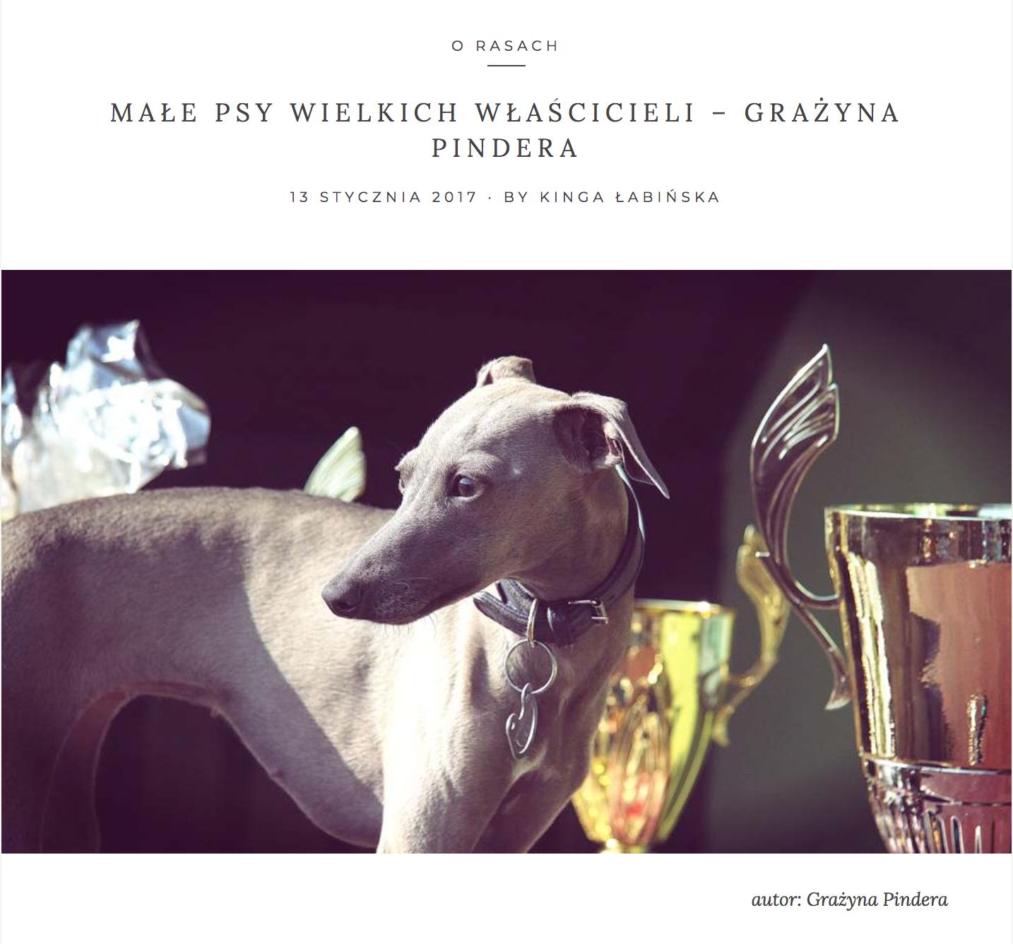 Małe Psy Wielkich Właścicieli - Grażyna Pindera